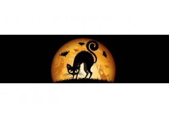 Хэллоуин-розыгрыш - Oc 2.x