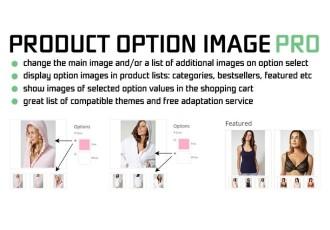 Product Option Image PRO 2,3