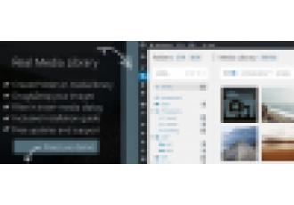 Wp Real Media Library - Структурирование Медиафайлов